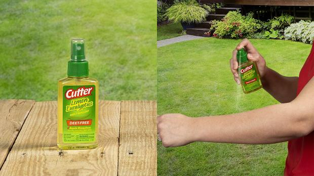Lancaster And Morecambe Citizen: Ditch the horrible smelling insect repellents for one that's fragrant and offers up to six hours of protection. Credit: Cutter