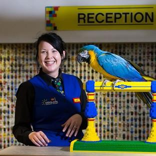 Lancaster And Morecambe Citizen: Charlie the parrot chats with receptionist Amber Dixon at the Legoland Windsor Resort Hotel in Berkshire.