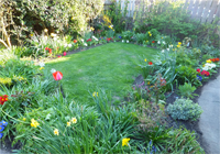 DAVID HAZELL T/AS RAINBOW GARDEN & BORDER EXPERT